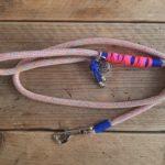 Basic lijn – blauw roze