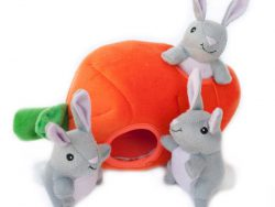 Zippy Burrow – Bunny 'n Carrot